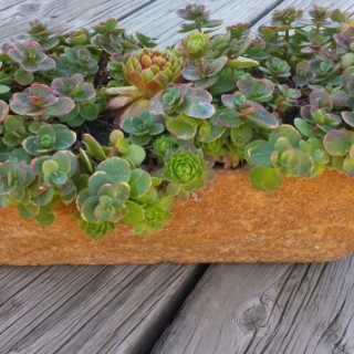 Planted with sedums, made in 2012